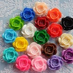 20pcs Resin Rose Cabochon 18mm - Assorted colours