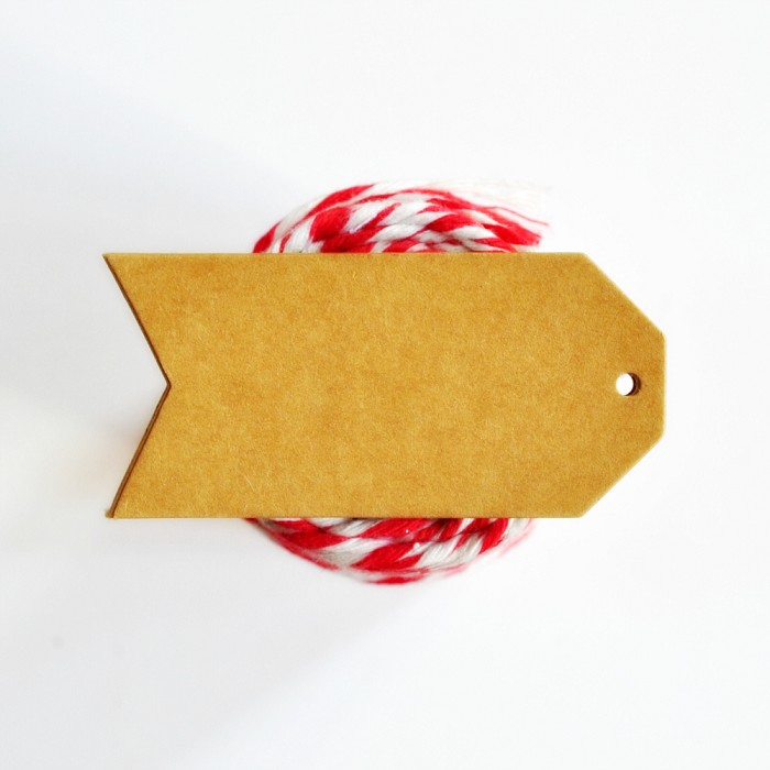 Kraft Luggage Tags {20} Large Pennant Style Blank | DIY Supplies Labels