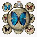 1 Inch Circle Vintage Butterflies Digital Collage Sheet - Digital Item