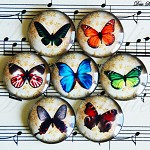 7 pcs Handmade Vintage Colorful butterflies photo cabochon glass dome