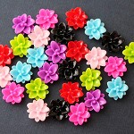 28 Mixed Resin Flower Cabs 10mm