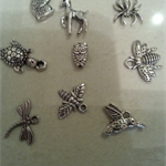 Set of 9 silver Charms 