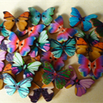 25 x 27mm Butterfly wood button~Flat back.