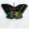 Butterfly Dichroic Glass Pendant Blues/Gold/Purple/Orange
