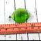 Green Faceted Tear Drop Pendant