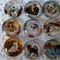 9 x Cats and Kittens glass domes 20mm for jewellery making , cards etc.