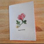 Cellophane Pack of 5 Handmade Australian Embossed Greeting Cards