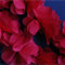 10 Red Shabby Chic Bella Fabric Flower Embellishments