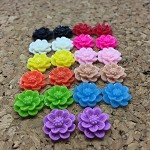 22pcs Resin Flowers, Cabochons - 15mm Aster Sampler