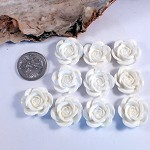 10x  Resin white rose Cabochon