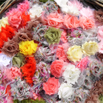 16 Autumn Lucky Dip SMALL Shabby Chiffon flowers mixed pack for hairclips