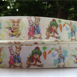 2 metres Peter Rabbit Grosgrain Ribbon Hairbow Cake Baby Shower FREE POST