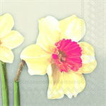 3 Paper Napkins for Decoupage Spring Beauty
