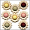 Buttons Country Daisy Flower Garden Cream Red Pink Yellow Green