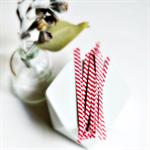 Red White Twist Ties {50} Stripe Twist Ties | Bread Twist Ties | July Christmas