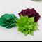 Succulent Garden 3D Papercraft, PDF Printable, Craft for Adults & Kids 6+