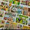 Comic Ephemera, Romans & Gauls, ATC materials, Mixed Media Supplies