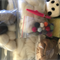 Wool fibre spinning or felting kit