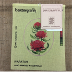 Tapestry Baxtergrafils Waratahs and Kangaroo Paw