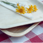"25x Large 10""/25cm SQUARE PALM LEAF Dinner Plates -Biodegradable/Eco Friendly"