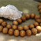 21 Brown natural wood rounded round ball beads 16mm