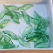 30 Green Acrylic Translucent and slightly twisted leaf beads 28x10mm