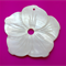 Natural Shell Flower Shaped Thread Winders