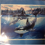 Dimensions Needlepoint Kit - Orca Cove