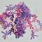Destash Paper Dragonfly Embellishments