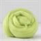 Merino wool tops / roving 19 micron – Chlorophyll - 50 gm