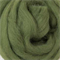 Merino wool tops / roving 19 micron – Ivy - 50 gm