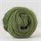 Merino wool tops / roving 19 micron – Ivy - 50 gm