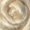 Viscose tops / roving - 20gm Acacia - cream