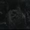 Viscose tops / roving - 20 gm - Dark - Black
