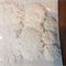 Assorted die cut paper flowers White