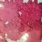 Assorted die cut paper flowers Hot Pink