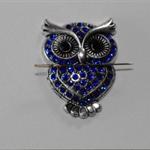 Blue Owl needle minder