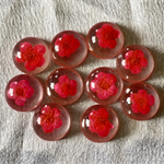10 Cerise Domed Resin Flower Cabs 12mm