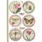 Rice Paper - Decoupage -  1 x A4 Size Sheet - Botanic Frames