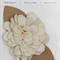 Burst Blossom | Linen